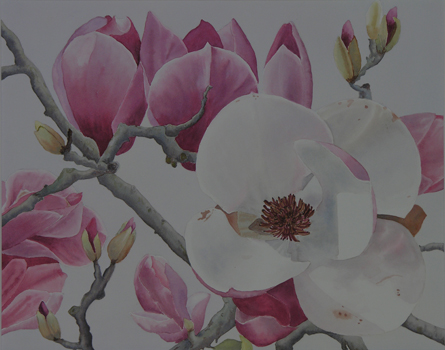 Magnolias in the Fog painting